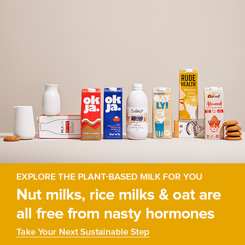 Explore the Plant-based Milk for You