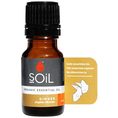 Soil Ginger Essential Oil