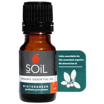 Soil Wintergreen Essential Oil
