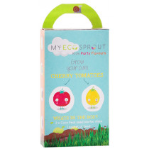 My Eco Sprout Kids Party Favours