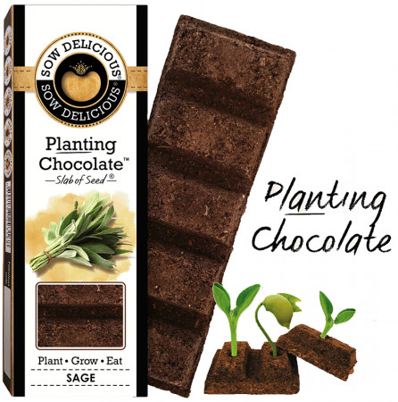 Sow Delicious Planting Chocolate - Sage